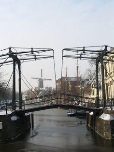 Madelief: Holland, winter in Schiedam  Nostalgie en trots van het 'oude' Schiedam. Het Schiedam waar men graag het liefst aan denkt, maar wat niet eeuwig de stad groot kan houden. Vernieuwing van de stad is nodig om te blijven bestaan, maar in hoeverre moet aan het oude vast worden gehouden?