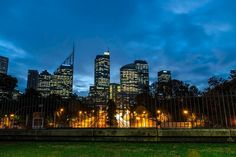 Hey Sydney! Blue hour as the city winds down. #travel #sydney #park #australia #bluehour #longexposure #nightphotography #cityscape