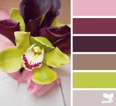 Jessicakes: Color Inspiration