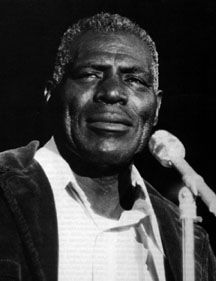 "Howlin Wolf: ""Three Hundred Pounds Of Heavenly Joy.."""