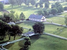 calumet horse farm, lexington, kentucky