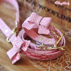cute dog collar & leash set