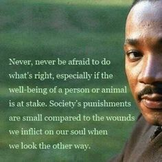 Martin Luther King Jr                                                                                                                                                                                 More