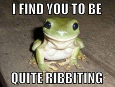 "* * [You're cute, but people get warts from handlin' ya.] -------------------[FROG: "" Rurals and urban legend."""