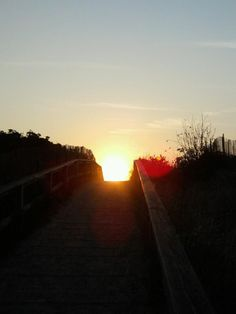 Footbridge Sunrise Bocce Court, Workout Rooms, Outdoor Pool, Marines, Sunrise, Country Roads, Ocean, Bocce Ball Court, The Ocean