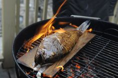 Fish grilled on a cedar plank. I've never seen this done before, but it looks like an awesome technique.