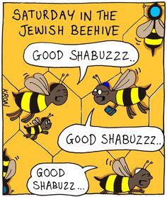 Shabbat Shalom to all!