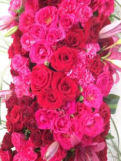 #pink and #red roses