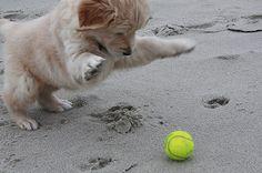 Having a ball.♥
