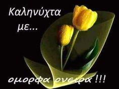 Beautiful Pink Roses, Good Morning Good Night, Greek Quotes, Funny Qoutes