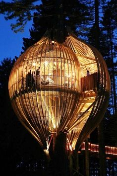 Tree Restaurant, Auckland, New Zealand | (10 Beautiful Photos)