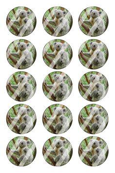"Koala Bear Bottle Cap 1"" Circle Images Sheet #B27 (instant download or pre cut)"