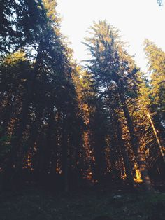 | still in awe | #travelphotography #hikingcouple #sunsetlover #romaniamountains #negoiu #naturelover #vscoromania #vscojournal #artistofinstagram Sunset Lover, My Journal, Romania, Vsco, Travel Photography, Celestial, Mountains, Outdoor, Outdoors