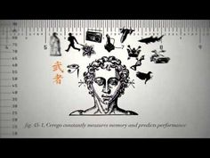 ▶ Cerego - Learning Science - YouTube
