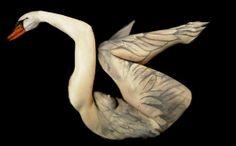 Swan by Thomas van de Wall