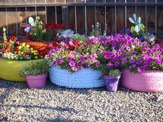 colourful tire planters: Fabulous garden container ideas