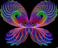 #butterfly #fractal