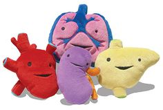 Plush organs from I Heart Guts. This one has the link.