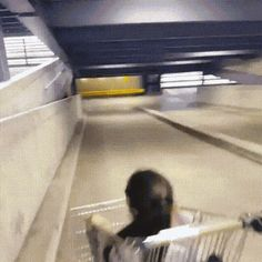 21 Best GIFs Of All Time Of The Week #186