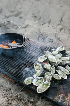 roasted oysters with stinging nettle butter - lean + meadow sunday oyster roast Fire Cooking, Outdoor Cooking, Beach Bbq, Oyster Bar, Fish And Seafood, Seafood Boil, Food Styling, Food Photography, Grilling