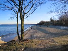 Orlowo - walking path along the beach, close the pier