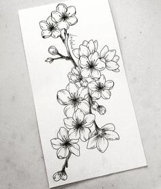 Learn To Draw A Realistic Rose cherryblossom Draw learn realistic Rose flowertattoos # Realistic Flower Drawing, Simple Flower Drawing, Beautiful Flower Drawings, Realistic Rose, Floral Drawing, Drawing Flowers, Flowers To Draw, Mandala Drawing, Painting Flowers