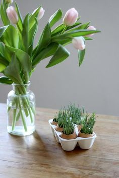 Wheat Grass Eggs - 25 Easy Spring Decorating Ideas We're DIYing this Weekend - Southernliving. These egg shells double as wheat grass planters in this adorable centerpiece. Just be sure you allow enough time for the seeds to sprout.  Get the tutorial here.