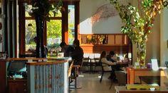 HEALDSBURG: Barn Diva Restaurant, Healdsburg - one of the best meals I have EVER had.