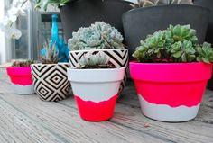 #diy #neon #dipped #paint #painted #pots #succulent