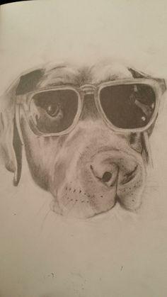 My own labrador, Chester
