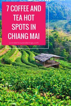#chiangmai #thailand #food