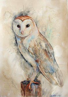Barn Owl by Zorionart. on deviantART-Barn, Owl, DeviantArt, Zorionartdeviant Animal Paintings, Animal Drawings, Art Drawings, Paintings Of Owls, Owl Watercolor, Watercolor Owl Tattoos, Owl Artwork, Owl Pictures, Wildlife Art