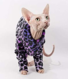 Cat Sweater Long Sleeved Fleece Pajamas in Purple Leopard Ombre. Comfortable warm high quality Sphynx Cat Clothes or dog clothes Pet Gift by SimplySphynx