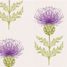 Stunning Nessy Thistle Highland Large Print Wall Art Wallpaper - Order Per Metre Motif Floral, Arte Floral, Thistle Wallpaper, Mushroom Wallpaper, Country Wall Art, Crafts Beautiful, Botanical Art, Stencils, Watercolor Paintings