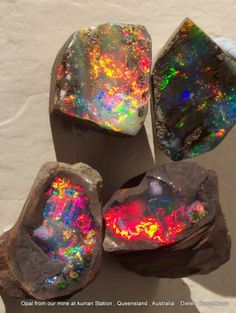 Some opal from our mine at Kurran Station , Queensland, Australia