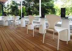 tapas bar terrace