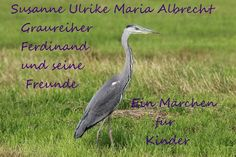 Susanne Ulrike Maria Albrecht Graureiher Ferdinand und seine Freunde
