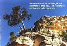 Challenge and grow and grow and grow
