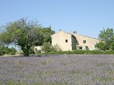 Authentic Provencal farmhouse in stone of the century over 20 hec Vacation Rental in Issirac from Cheap Villas, Home And Away, Provence, Ideal Home, 19th Century, Farmhouse, Vacation, Stone, Houses
