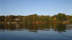 Fall is one of our favorite times of the year. The threat of severe weather is minimal, the air is crisp and clean and of course, the colo. Tennessee Valley Authority, East Tennessee, Severe Weather, Time Of The Year, Cottage, River, Lakes, Fall, Bugs