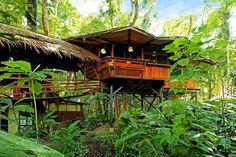 Já imaginou dormir em uma casa na árvore? Nesse hotel na floresta da Costa Rica é exatamente isso que você irá fazer! Você pode desfrutar de todo o conforto e serviços de um hotel, hospedado em uma casa na árvore privativa. Tudo isso no meio de uma floresta linda, do lado do mar, com uma lista enorme de atividades que você pode aproveitar durante sua estadia.