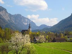trees sky mountains alps church clouds austria spring path meadows abigfave anawesomeshot yourbestoftoday fleursetpaysages villageontheborderwithbavaria