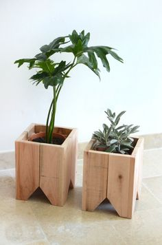 39 Captivating Wood Succulent Planter Ideas Of Unused Wood Succulents are perfect plants for dry gardens and are easy to root and grow. Once you learn how easy it […] Diy Wood Projects, Garden Projects, Wood Crafts, Woodworking Projects, Woodworking Beginner, Woodworking Lamp, Woodworking Garage, Intarsia Woodworking, Woodworking Patterns