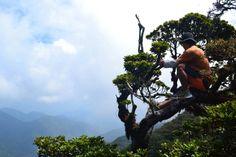 Mt. Kalawitan, Sabangan, Philippines What A Wonderful World, Wonders Of The World, Philippines, Mountains, Nature, Travel, Naturaleza, Viajes, Destinations