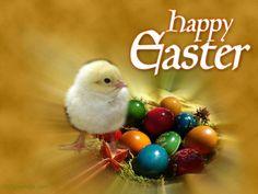Happy Easter Desktop