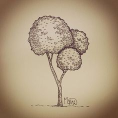 I Liked this Instagram: #일러스트 #그림 #illustration #illustrator #drawing #doodle #낙서 #스케치 #sketch #artwork #artist #나무 #tree #trees #nature #자연 #pen #pencil #painter #미술 #art by miloow.garden