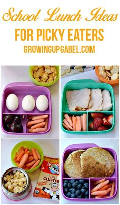 School Lunch Ideas for Picky Eaters Tired of trying to figure out what to pack your picky eater for lunch? Check out these 4 tips for packing a school lunch that will make your picky eater cheer! Cold Lunches, Toddler Lunches, Lunch Snacks, Lunch Recipes, Baby Food Recipes, Healthy Recipes, Toddler Food, Detox Recipes, Comida Diy