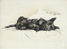 'baby Scottie wakes up'...  pastel by illustrator, Lucy Dawson. She sometimes signed her work: 'Mac'.   Incredible talent for capturing the 'Scottie-spirit'-- LOVE her work!