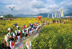 A fantastic spring journey in South Korea
