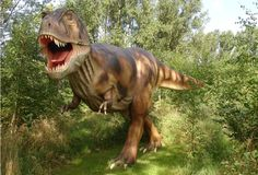 The discovery is just one of the recent ones in 2015. A couple of months back, tyrannosaur teeth were discovered in Nagasaki, Japan. It was found in a geological layer that is believed to be about 81 million years old.